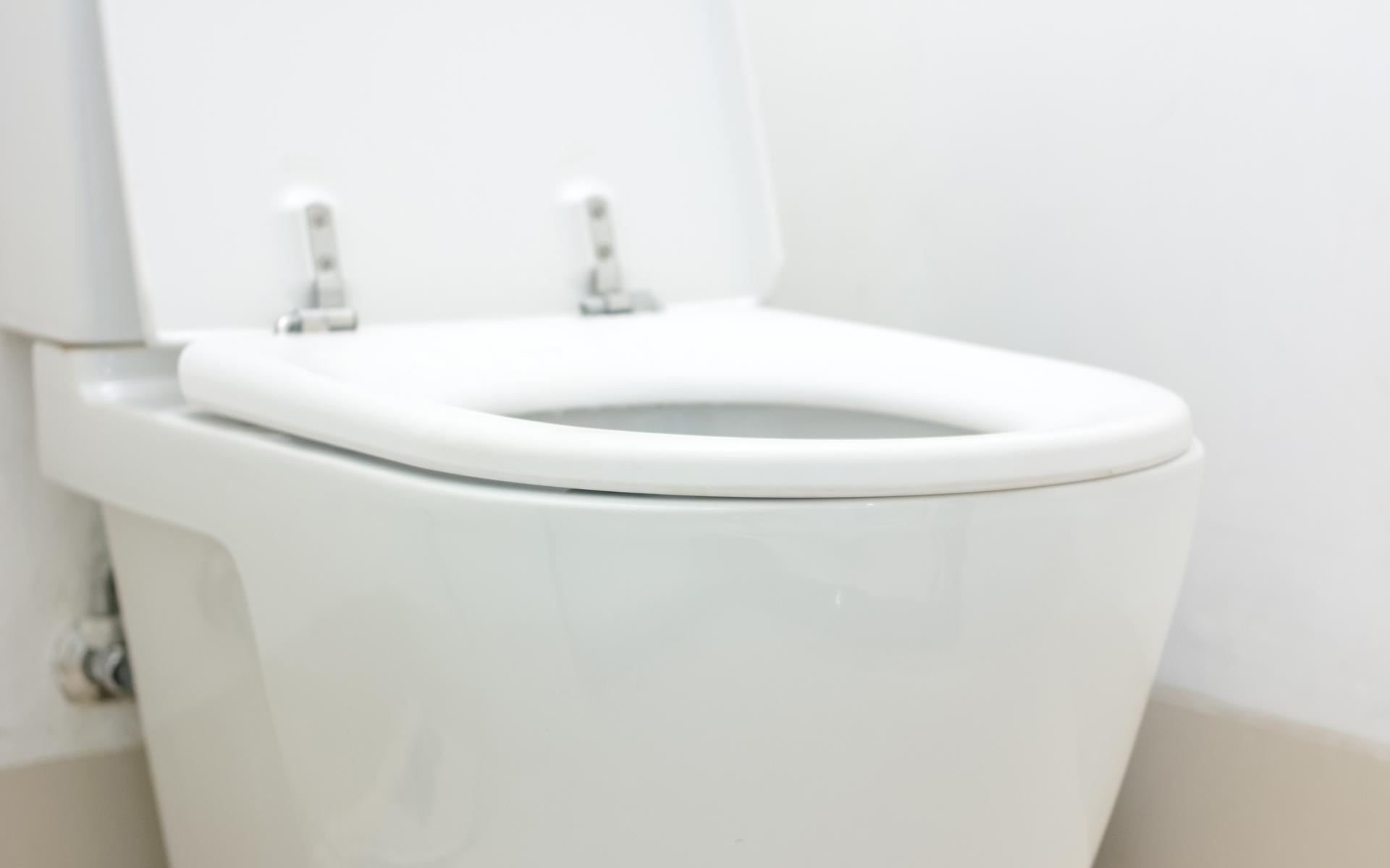 Big Sandy Toilet Repair